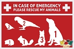 Add-on Item: Emergency Alert Decal