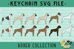 Boxer Collection SVG