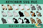 Domestic Long Hair Cat Collection SVG