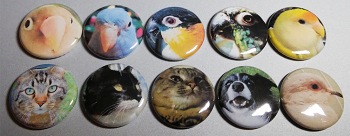 "Custom 1"" Photo Buttons"