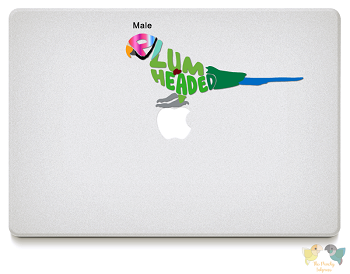 Plum Headed Parakeet Vinyl Decals